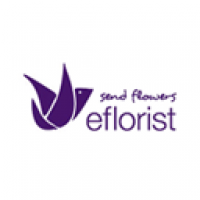 eFlorist Flowers-coupons